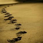 Le tue trattative sfumano per strada? torniamo alla negoziazione (con 10 consigli)